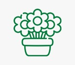 Sonya Plants & Flowers LLC