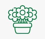 زهور التاج