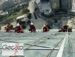 Gecko Middle East