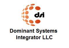 Dominant Systems Integrator