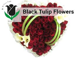 Black Tulip Flowers L.L.C