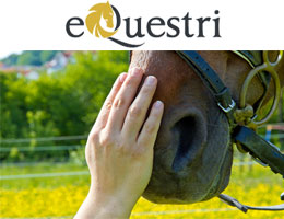 Equestri Equestrian Equipment Supplies Trading LLC