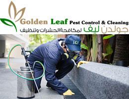 جولدن ليف لمكافحة الحشرات وتنظيف