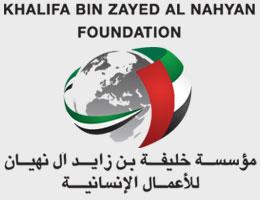 مؤسسة خليفة بن زايد آل نهيان للأعمال الانسانية