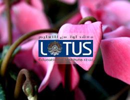 Lotus Educational Institute FZ LLC
