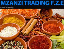 Mzanzi Trading FZE