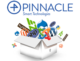 Pinnacle Computer Systems LLC