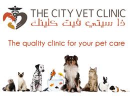 The City Vet Clinic